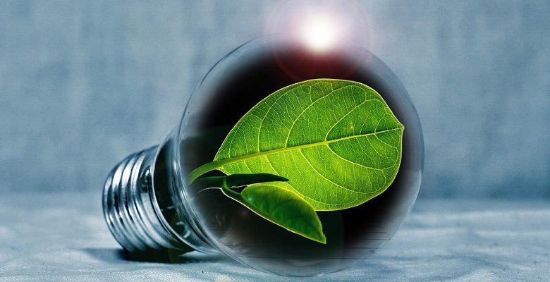 En 2018, l'Ecolabel Européen fête ses 25 ans